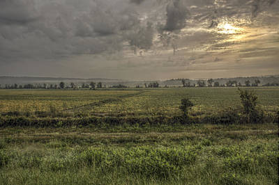 Photograph - Beanfield At Sunrise by Jason Politte