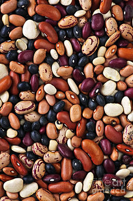 Loose Photograph - Beans by Elena Elisseeva