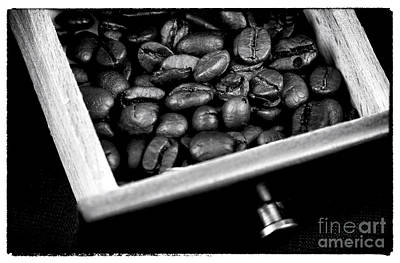 Photograph - Beans In A Box by John Rizzuto