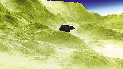 Photograph - Bear 2 by The Art of Marsha Charlebois