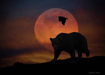 Night Hawk Wall Art - Photograph - Bear And Moon by Stephanie Laird