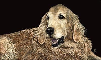 Drawing - Bear by Ann Ranlett