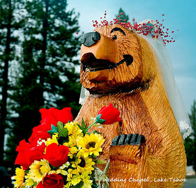 Bear Photograph - Bear At The Wedding Chapel Lake Tahoe by LeeAnn McLaneGoetz McLaneGoetzStudioLLCcom