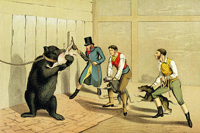 Pulley Painting - Bear Baiting by Henry Thomas Alken