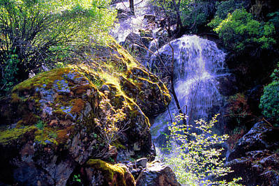 Bear Creak Tributary Bryceburg Junction Near Yosemite Art Print