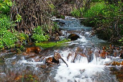 Photograph - Bear Creek Tributary by Jon Emery