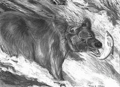 Grizzly Bear Drawing - Bear Fishing For Salmon. by Patricia Wilhelm