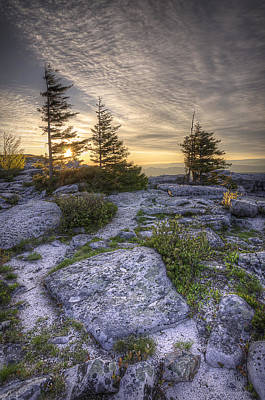 Bear Rocks Sunrise Art Print by Michael Donahue
