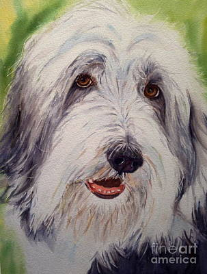 Painting - Bearded Collie by Kathy Flood