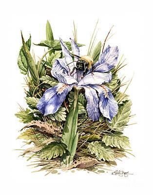 Painting - Bearded Dwarf Iris by Bob  George