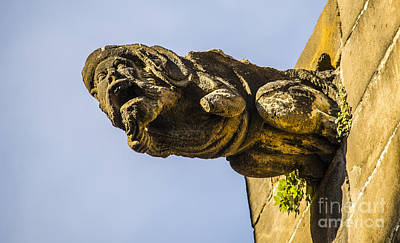 Photograph - Bearded Old Man Gargoyle by Deborah Smolinske