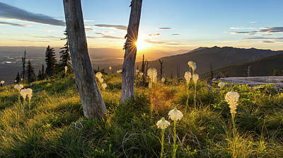 Swans Sunset Photograph - Beargrass At Sunset In The Swan Range by Chuck Haney