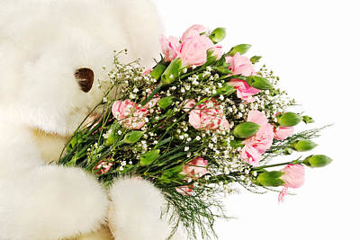 Photograph - Toy Bear Holding A Bouquet Of Carnations by Vizual Studio