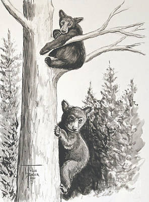 Painting - Bears In A Tree by Art By - Ti   Tolpo Bader