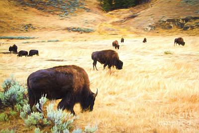 Digital Art - Beasts Of Yellowstone by Lori Dobbs