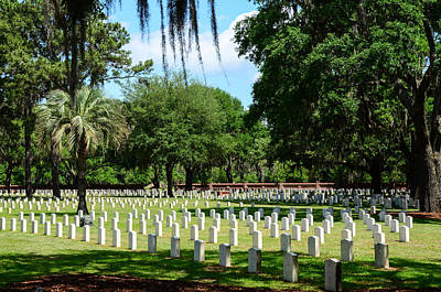 Photograph - Beaufort National Cemetery by Debra Martz