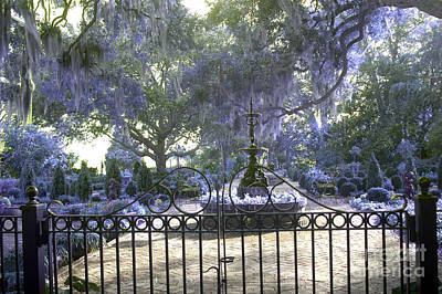 Fantasy Tree Art Photograph - Beaufort South Carolina Dreamy Purple Lilac Garden Gates  by Kathy Fornal