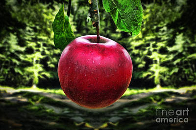 Healthy Eating Mixed Media - Beautiful Apple by Milan Karadzic