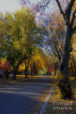 Frank J Casella Royalty-Free and Rights-Managed Images - Beautiful Autumn  by Frank J Casella