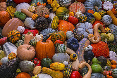 Gourds Photograph - Beautiful Autumn Harvest by Garry Gay