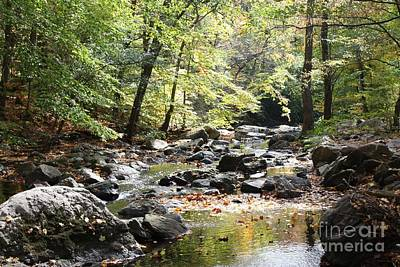 Photograph - Beautiful Babbling Brook In Sleepy Hollow by John Telfer