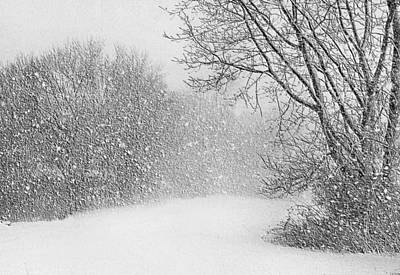 Photograph - Beautiful Blizzard by Kristin Elmquist