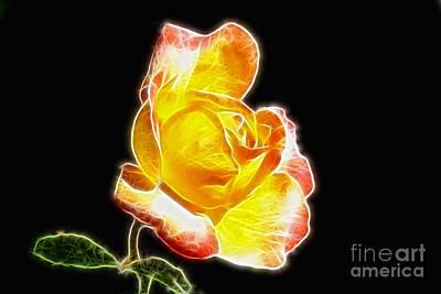 Beautiful Blooming Yellow Rose Art Print by Mariola Bitner