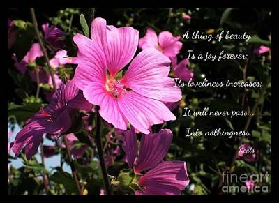 Beastie Boys - Beautiful Blossom 2 by Joan-Violet Stretch