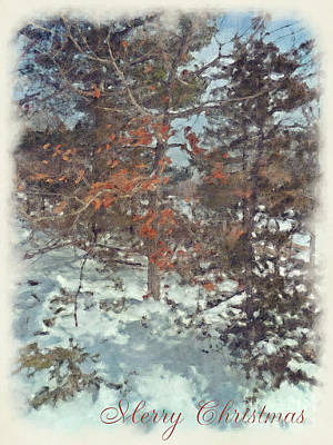 Photograph - Beautiful Branches Merry Christmas Card by Claire Bull
