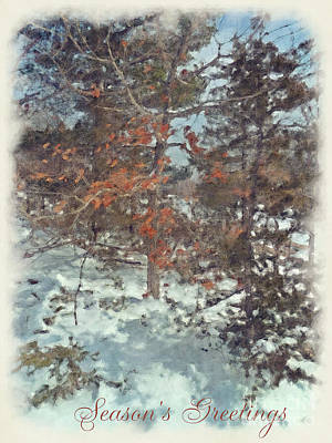 Photograph - Beautiful Branches Season's Greetings Card by Claire Bull