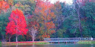 Photograph - Beautiful Bridge by Annette Allman
