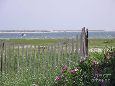 Photograph - Beautiful Chatham by Michelle Welles