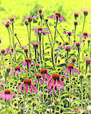 Photograph - Beautiful Coneflowers by Mike Flake