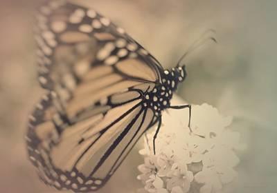 Tenderness Photograph - Beautiful Dream by The Art Of Marilyn Ridoutt-Greene
