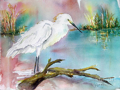 Ibis Painting - Beautiful Egret by Joyce Allen