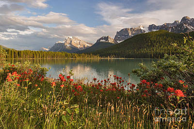 Photograph - Beautiful Evening At Upper Waterfowl Lake by Charles Kozierok