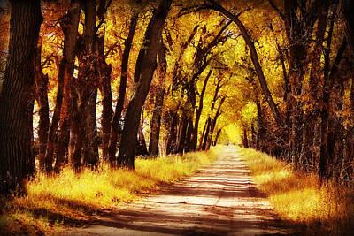Beautiful Fall Day In Nebraska Art Print
