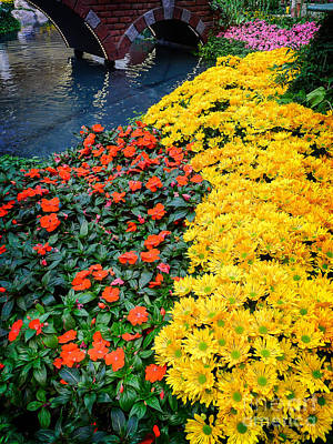 Garden Bridge Photograph - Beautiful Flower Garden Bellagio Las Vegas by Edward Fielding