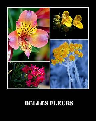 Photograph - Beautiful Flowers by AJ  Schibig