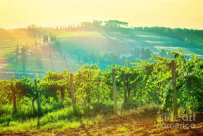 Photograph - Beautiful Grape Valley Landscape by Anna Om