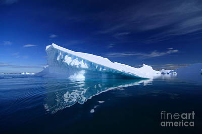 Beautiful Iceberg Art Print by Boon Mee