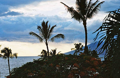 Art Print featuring the photograph Beautiful Maui Lan 44 by G L Sarti