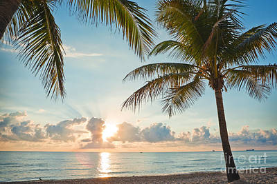 Photograph - Beautiful Morning In Ft. Lauderdale Florida by Sharon Dominick