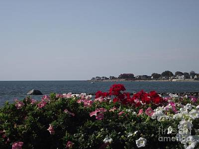 Photograph - Beautiful Old Saybrook by Michelle Welles