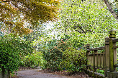 Photograph - Beautiful Pathway by Priya Ghose