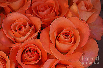 Abstract Forms Digital Art - Beautiful Peach Roses 2 by Carol Lynch
