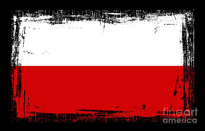 Beautiful Poland Flag Art Print by Pamela Johnson