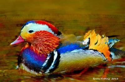 Impressionist Landscapes - Beautiful Quacker by Bruce Nutting