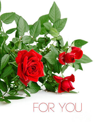 Beautiful Red Roses For You Print by Boon Mee