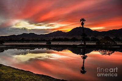 Photograph - Beautiful Reflections by Robert Bales